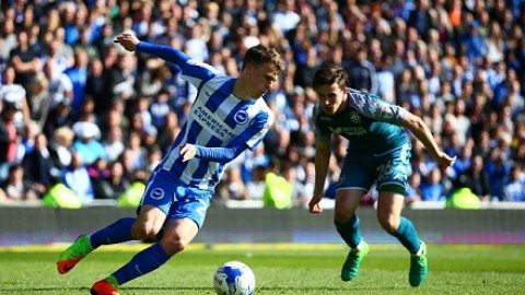 Norwich v Brighton Betting Tips & Preview